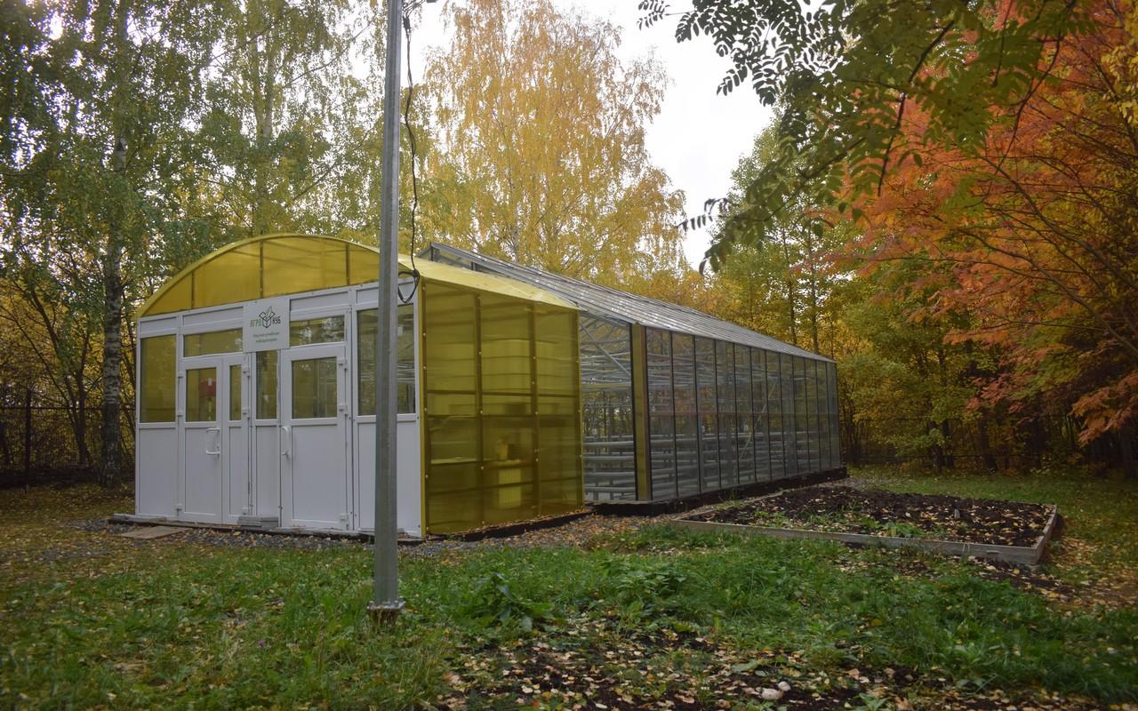 Агрокуб в патрушевской школе