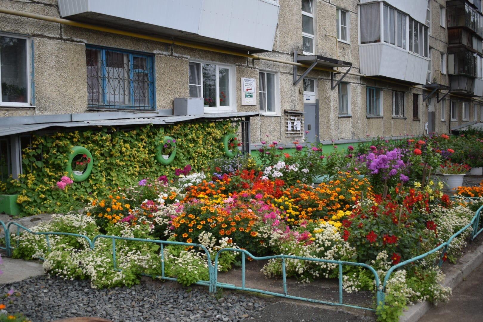 Ухоженная и цветущая придомовая территория